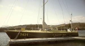 bagheera_-_Dartmouth